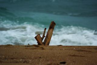 L'océan, le sable