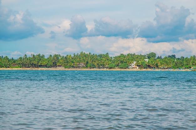 Océan sri lanka. nature et palmiers.
