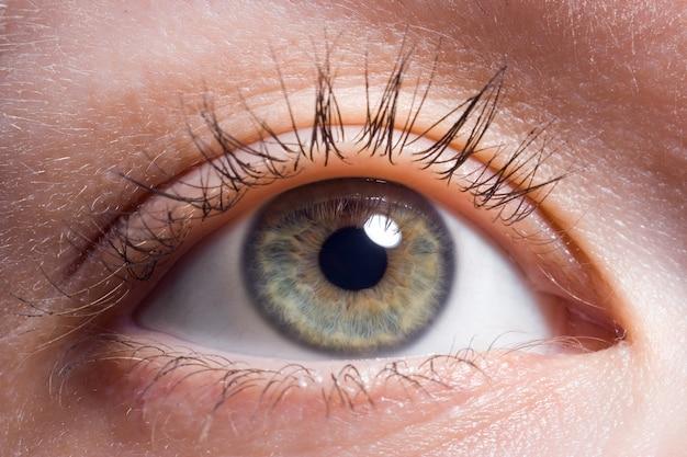 Oeil de beauté humaine macro