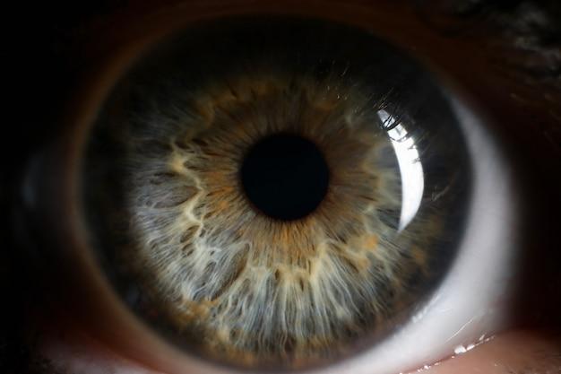 Oeil vert humain supermacro closeup fond