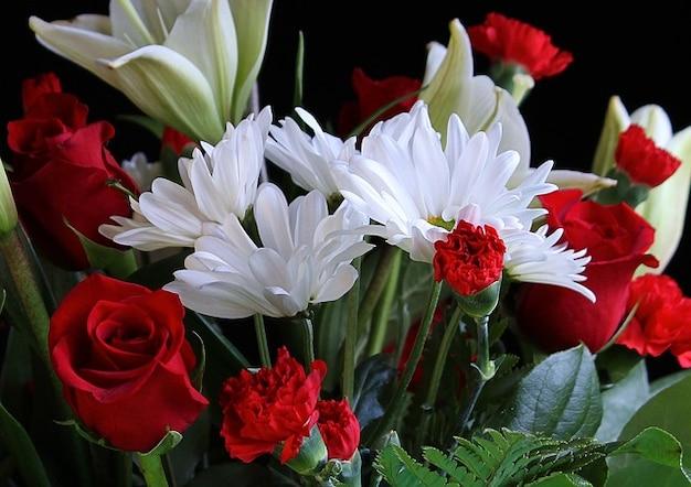 Oeillets roses daisys fleurs
