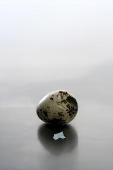 Oeuf de caille cassé, un nouveau bébé oiseau va naître