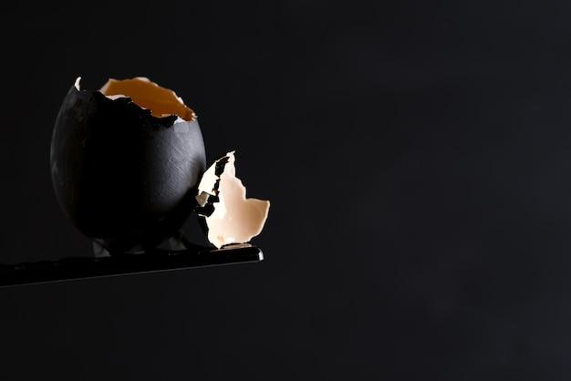 Oeuf cru cassé peint en noir avec jaune d'oeuf frais