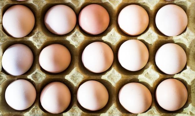 Œuf, œuf de poulet