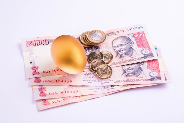 Un oeuf d'or sur un tas de billets de banque indiens