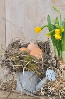 Œufs au nid