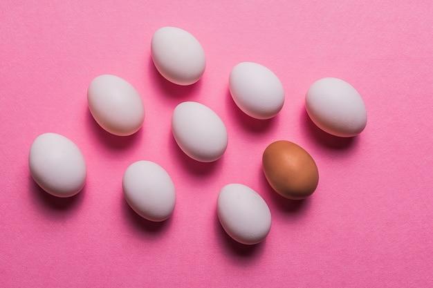 Oeufs blancs biologiques dans un fond cru sur pastel.