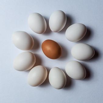 Oeufs blancs biologiques sur fond blanc.