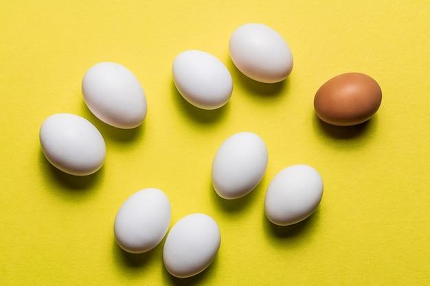Oeufs blancs biologiques sur le fond pastel.