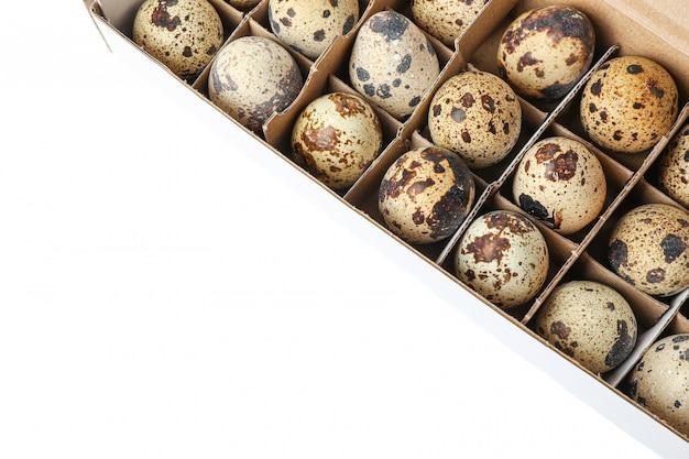 Oeufs de caille dans une boîte en carton isolé sur blanc