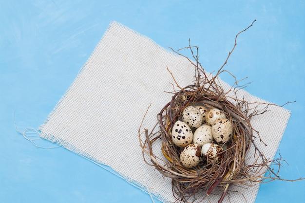 Oeufs de caille dans un nid de branches sur fond bleu, tissu léger, fond de pâques, nourriture naturelle, espace copie, vue du dessus