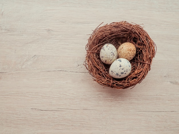 Œufs de caille dans un nid sur un fond en bois