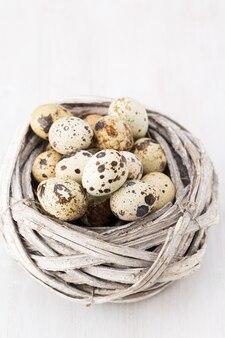 Oeufs de caille du nid d'oiseaux. composition de pâques.