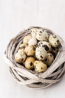 Oeufs de caille du nid d'oiseaux