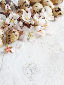 Oeufs de caille et fleurs d'amandier sur un fond en bois