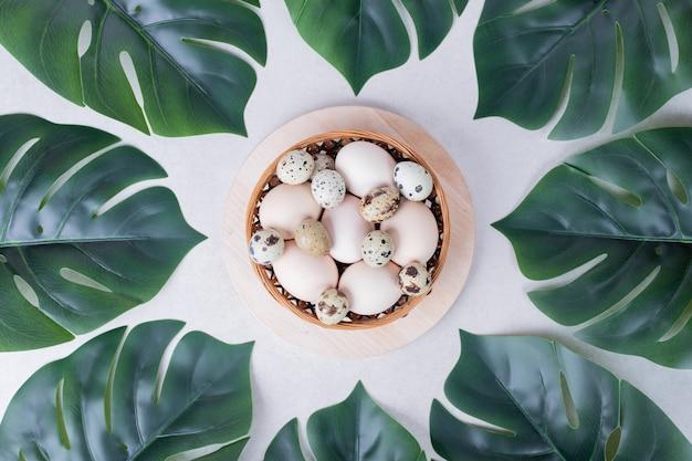 Œufs de caille et œufs de poule dans un bol avec des feuilles artificielles.