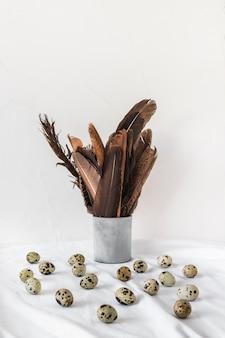 Oeufs de caille de pâques près de plumes noires en boîte sur textile