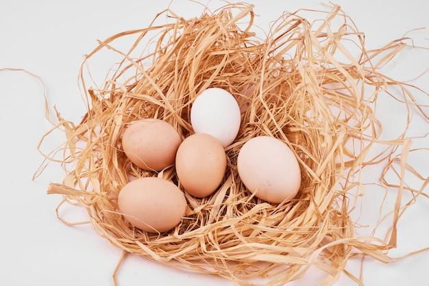 Oeufs crus dans un nid d'oiseau sur une surface blanche.