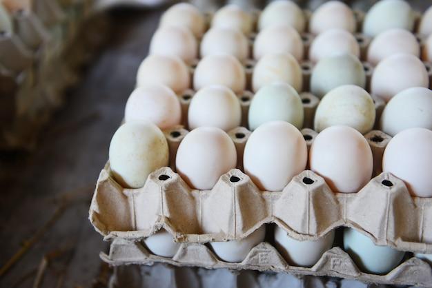 Oeufs frais boîte d'oeufs de canard blanc - produire des œufs frais de la ferme