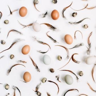 Oeufs de pâques blancs et bruns, oeufs de caille et plumes sur une surface blanche