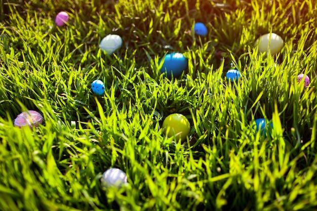 Oeufs de pâques cachés dans l'herbe de printemps