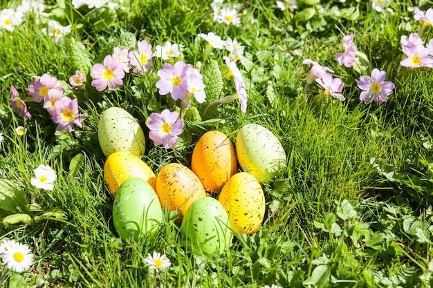 Oeufs de pâques colorés cachés dans les fleurs et l'herbe