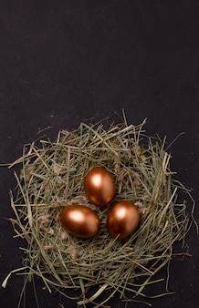 Oeufs de pâques dans un nid
