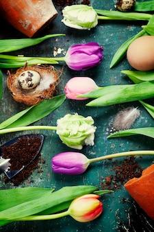 Oeufs de pâques avec des fleurs de tulipes au printemps et des outils de jardin sur planche de bois vintage