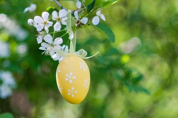 Oeufs de pâques jaunes sur un cerisier, composition de pâques