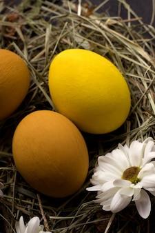 Oeufs de pâques jaunes