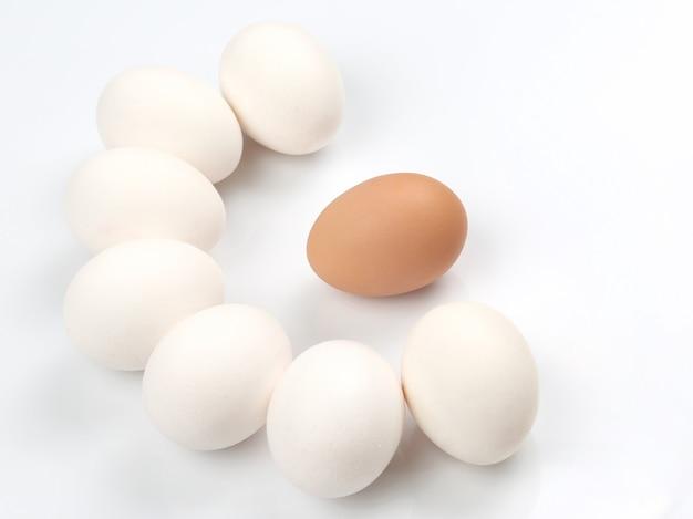 Œufs de poule sur blanc