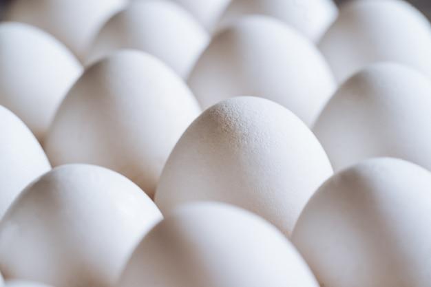 Œufs de poule blancs dans un récipient