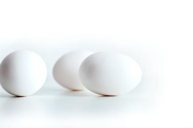 Oeufs de poule blancs