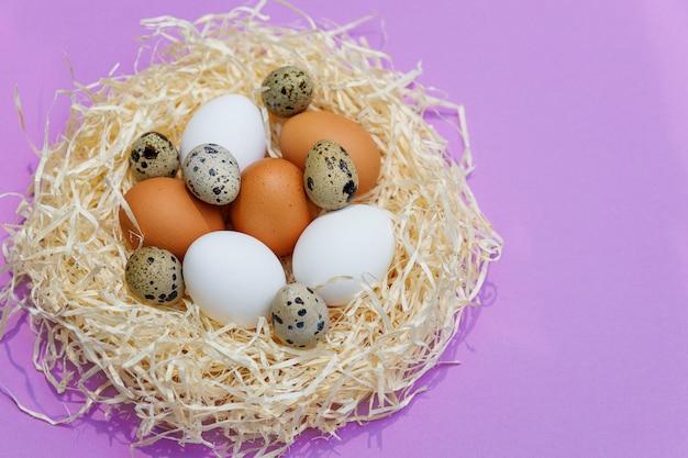Oeufs de poule et de caille en nid de paille sur lilas