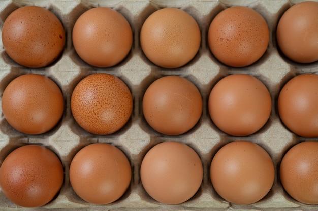 Oeufs de poule crus aliments biologiques pour une bonne santé à haute teneur en protéines.
