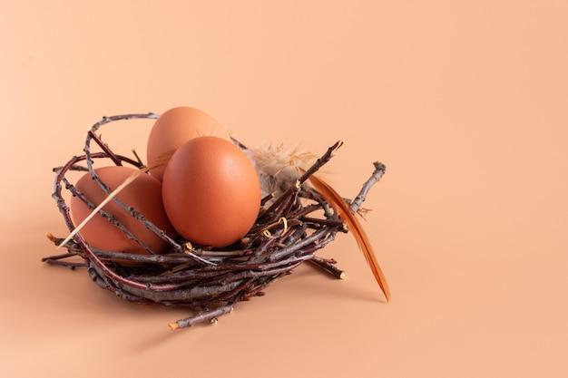 Oeufs de poule dans un nid sur beige