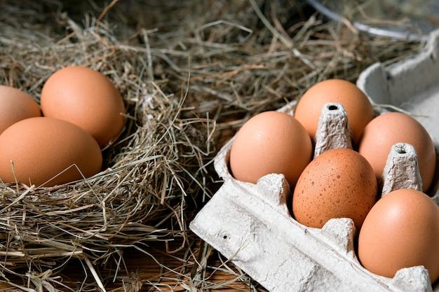Oeufs de poule dans des nids d'osier en vue de dessus de poulailler. oeufs biologiques naturels dans le foin. oeufs de poule frais.