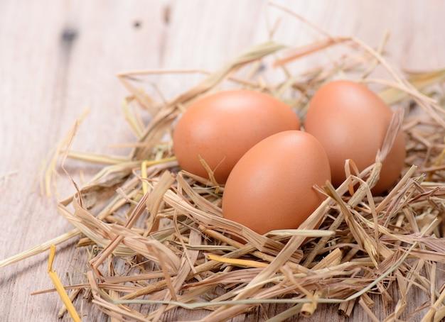 Oeufs de poule frais avec nid sur la table en bois