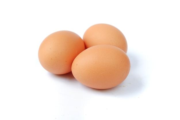 Oeufs de poule isolés