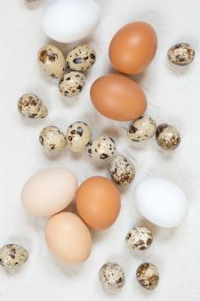 Oeufs de poulet et de caille et brindilles de saule sur une toile froissée
