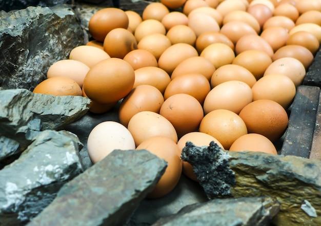 Les œufs sont cuits en les plaçant sur de la pierre chaude.