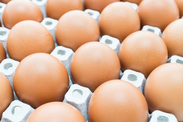 Des œufs.