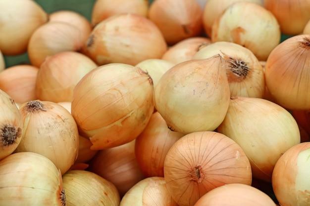 Oignon au marché