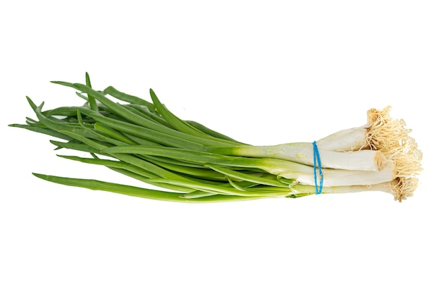 Oignon Frais Vert Isolé Sur Fond Blanc Gros Plan Photo Premium