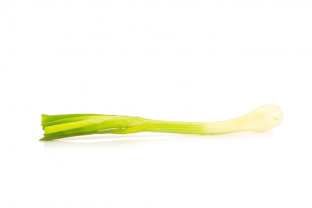 Oignon de printemps isolé sur fond blanc