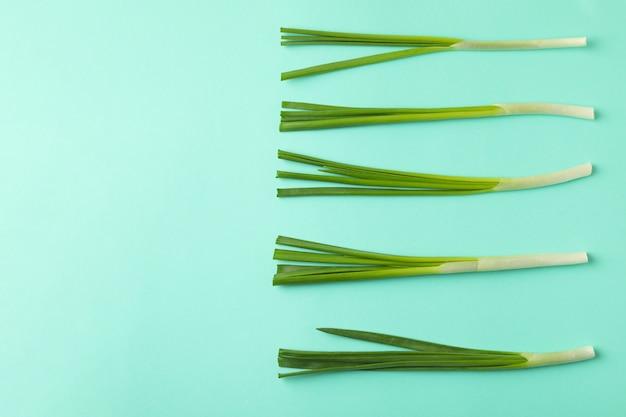 Oignon vert frais sur fond isolé de menthe