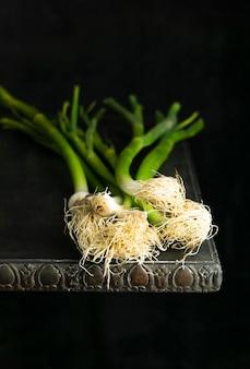 Oignon vert haute ange sur table