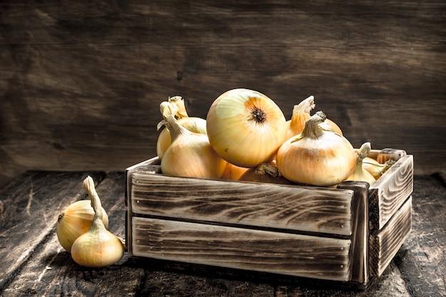 Oignons frais dans une vieille boîte sur un fond de bois