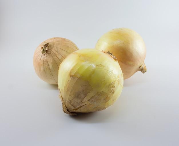 Oignons frais sur fond blanc