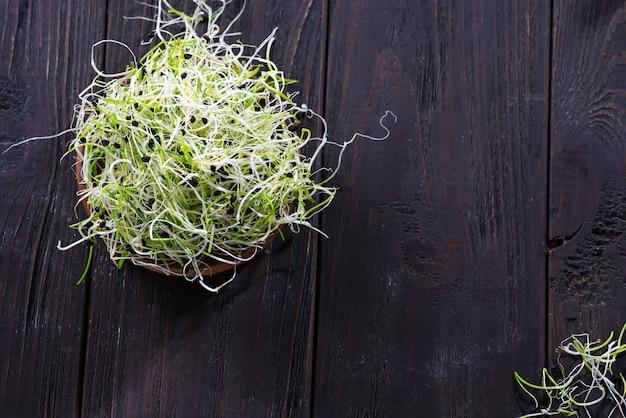 Oignons micro verts frais, germes pour une salade saine.